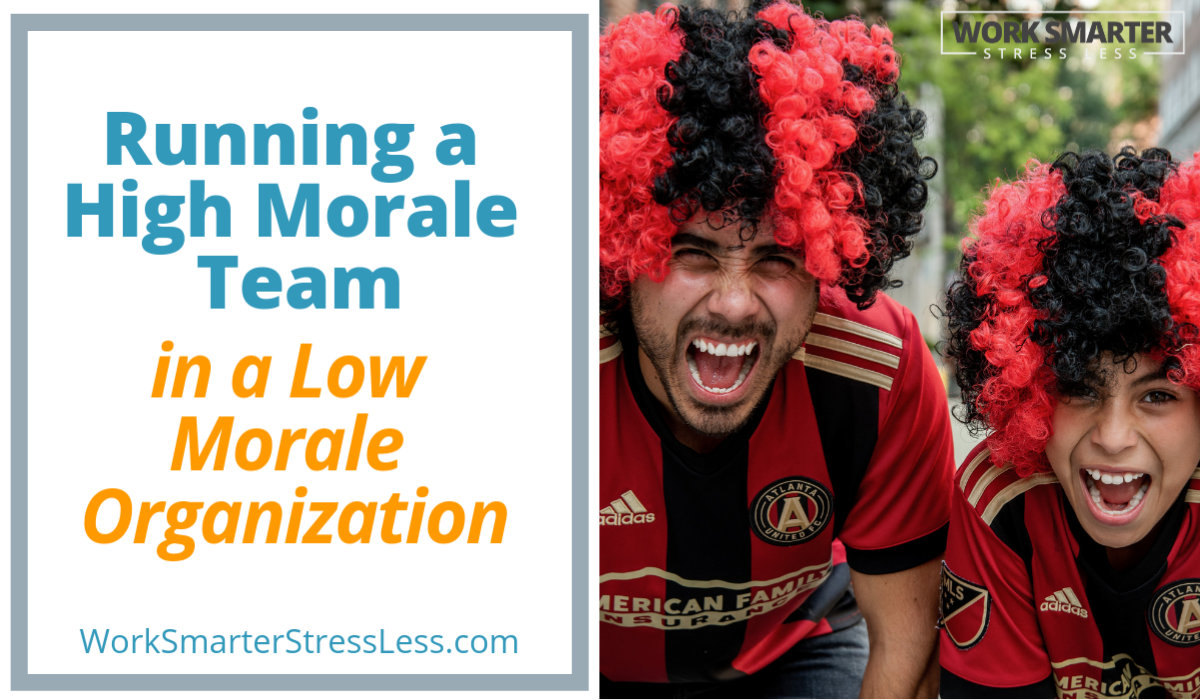 Running High Morale Teams in a Low Morale Organization